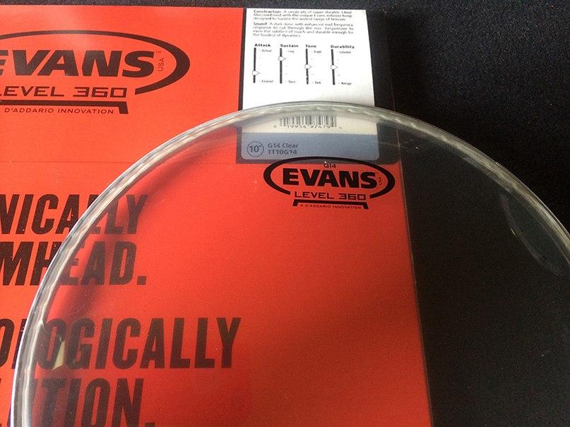 Гайд по пластикам Evans: история,технология Level 360, обзор серий